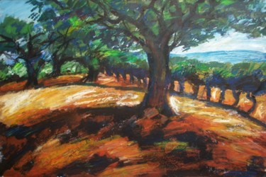Olivier et champ de vignes
