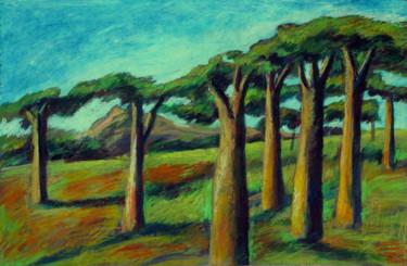 Baobabes