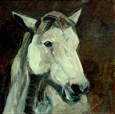 Daily Tête de cheval blanc. 20/02/10